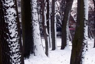 Busko-Zdrój