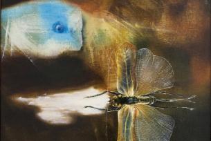 Wawrzyk Leszek-wystawa