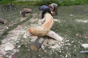 Wrażliwość w drewnie ukryta