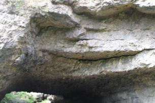 Rezerwat w Skorocicach