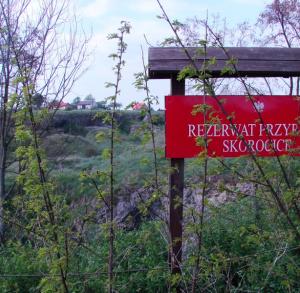 Rezerwat Skorocice
