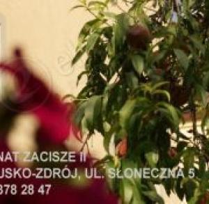 """noclegi ul.Słoneczna  5 """"Zacisze II"""""""