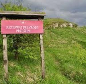 """Rezerwat florystyczny """"Przęślin"""""""