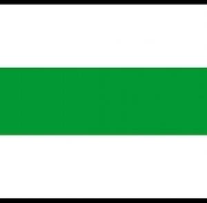 zielony Grochowiska-Wiślica