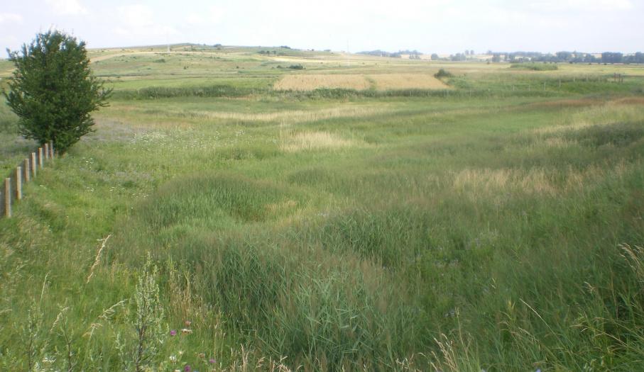 Rezerwat Owczary