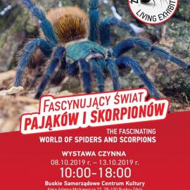 Zapraszamy na wystawę pająków w BSCK